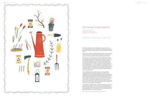 Issue 15, Honey Fungus Bench p114-117-1
